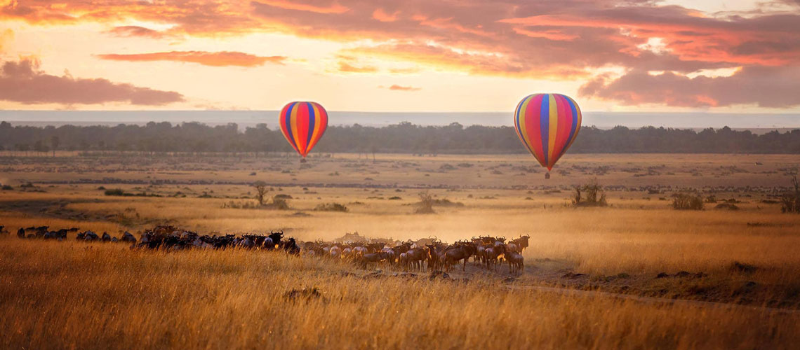 GoExplore africa luxury safaris